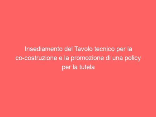 Insediamento del Tavolo tecnico per la co-costruzione e la promozione di una policy per la tutela dei minorenni nel mondo dello sport